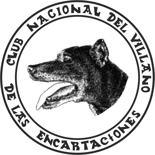 XXV. MONOGRAFICA DE PERRO VILLANO