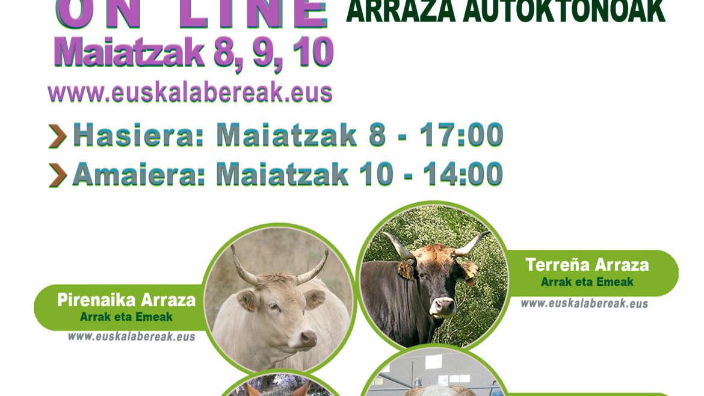 ARRAZA ANITZEKO ENKANTEA ONLINE